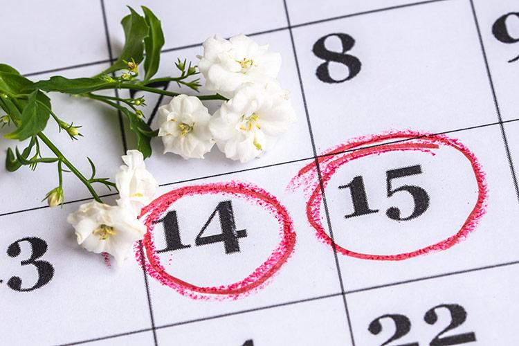 Menstruační kalendář | Foto: Shutterstock