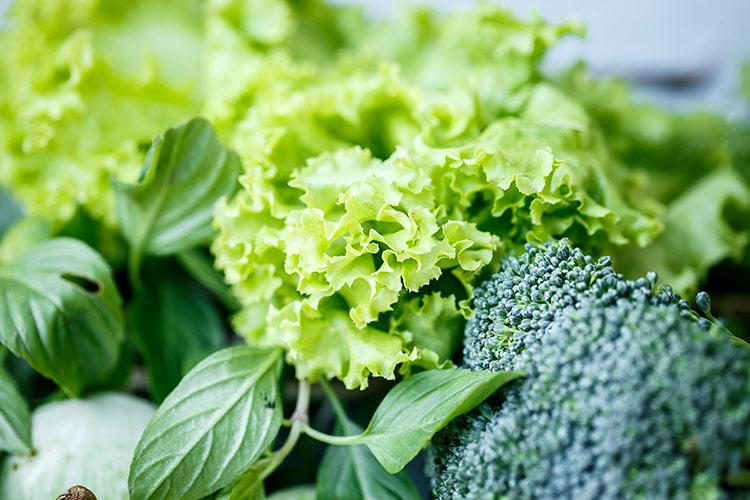 Zdroje kyseliny listové | Foto: Shutterstock