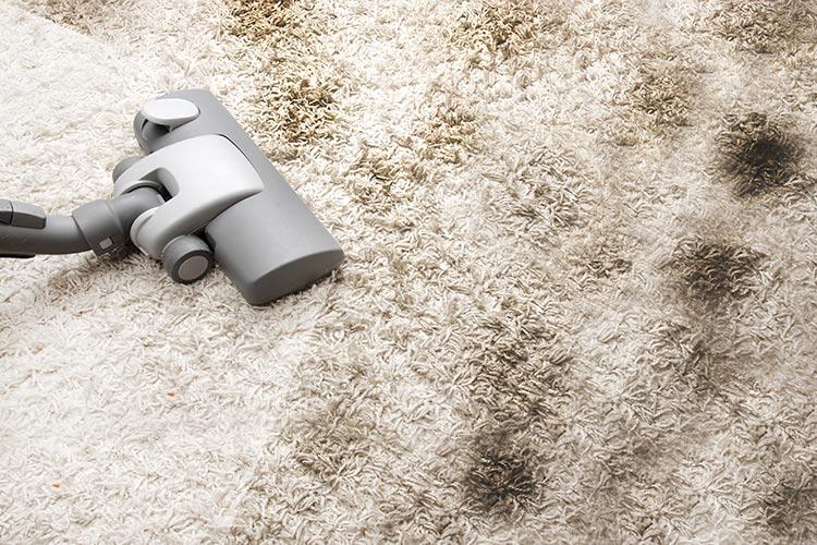 Roztoči a prach | Foto: Shutterstock