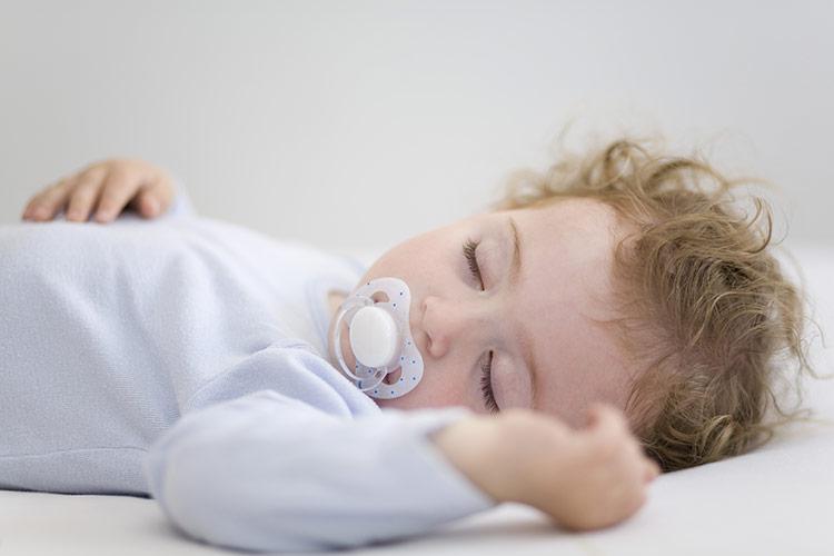 Batole ve spánku | Foto: Shutterstock