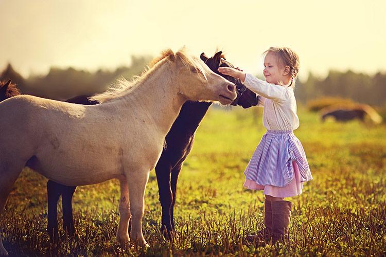 Holčička a koně | Foto: Shutterstock