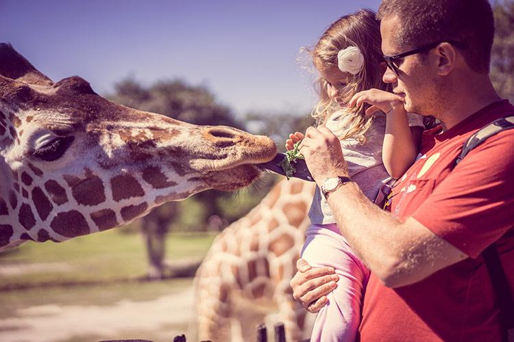S dětmi do ZOO | Foto: Shutterstock