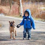 Pes přítel dítěte
