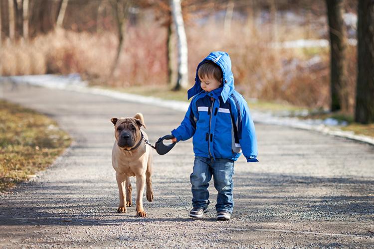 Pes a dítě | Foto: Shutterstock