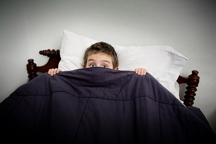 Malý nespavec | Foto: Shutterstock